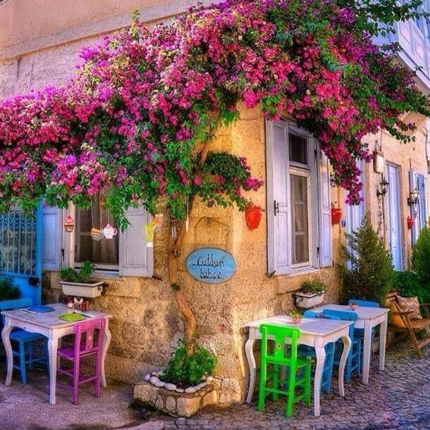 Balkon Çiçekleri Çeşitleri ile Balkonunuzu Dizayn Edin ve Ruhunuza Sihirli Dokunuşlar Gerçekleştirin