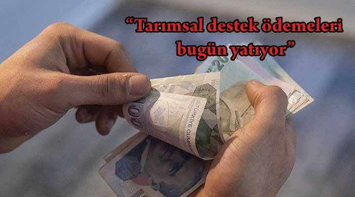 Tarımsal destek ödemeleri bugün yatıyor